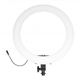 Lampa pierścieniowa LED Newell RL-18A - WB (3200 K - 5500 K)