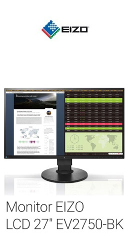 Monitor eizo